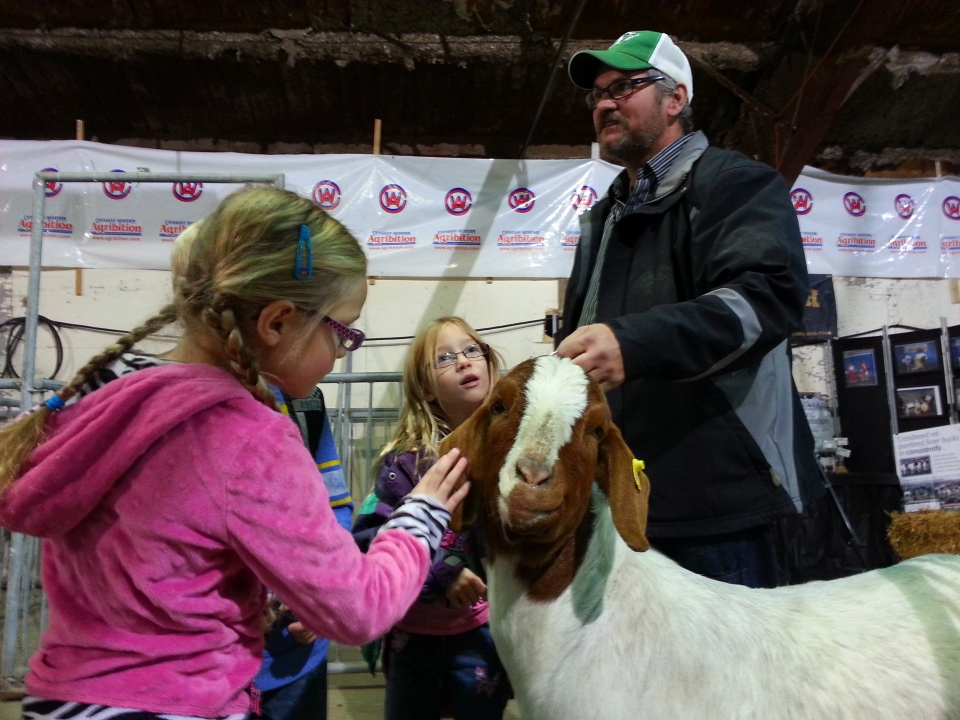 The 42nd annual Canadian Western Agribition got underway Monday in Regina.