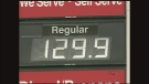 CTV Regina: Myth busting the jump at the pumps