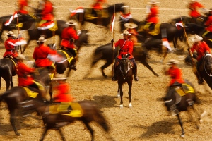 In this photo taken Thursday, Aug. 16, 2012, the Royal Canadian Mounted Police perform their Musical Ride at the Wyoming State Fair in Douglas, Wyo. (AP Photo/Casper Star-Tribune, Dan Cepeda)
