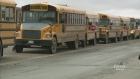 CTV Regina: Bus drivers wanted