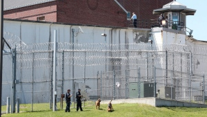 Law enforcement officers with bloodhounds stand guard at one of the entrances to the Clinton Correctional Facility in Dannemora, N.Y. on Saturday, June 6, 2015.  (Gabe Dickens/Press-Republican via AP)