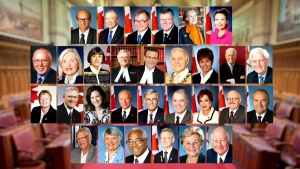 CTV News has obtained a breakdown of the amounts that 30 senators are said to owe taxpayers for filing allegedly questionable expense claims, and who from that group has started to pay the money back.
