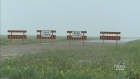 CTV Regina: Regina Bypass project cost