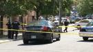 CTV News Channel: Man dies after Ottawa arrest