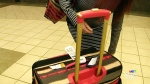 Lawsuit looms over airline baggage fees