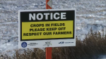 Snowmobilers asked to stay off farmland